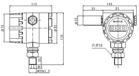 CSY-3GD型无线数字压力传感器结构图.jpg